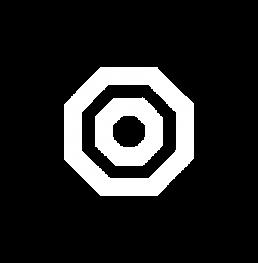 Dojo octagon logo